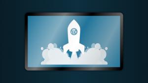 wtyczki do Wordpress